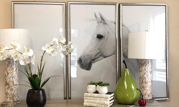 Arabian horse in photo frame